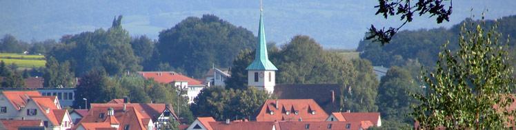 Blick auf den Ortskern und die Kirche